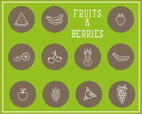 Комплект плодоовощ и ягод печати плана Стоковое Фото