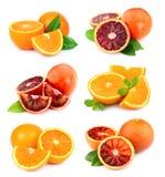 Комплект плодоовощ сладкого апельсина Стоковые Изображения