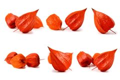 Комплект плодоовощ физалиса белизна изолированная предпосылкой Стоковые Фото