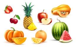 Комплект плодоовощ яблока арбуза папапайи ананаса экзотический Стоковые Изображения RF