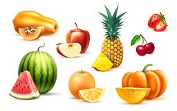 Комплект плодоовощ яблока арбуза папапайи ананаса экзотический Стоковое Фото
