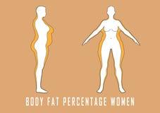 Комплект плоских женщин перед и после иллюстрацией вектора диеты тучная девушка тонкая Стоковое Изображение RF