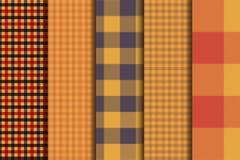 Комплект 5 предпосылок картины тартана вариантов безшовных Шотландка панели цвета осени иллюстрация штока