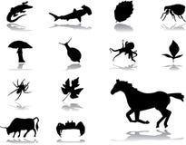 комплект природы 151 иконы иллюстрация вектора