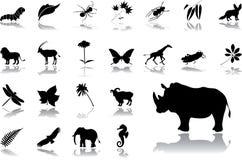 комплект природы 16 большой икон иллюстрация вектора