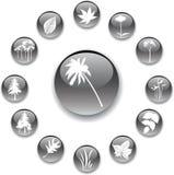 комплект природы 5 кнопок серый Стоковые Изображения RF