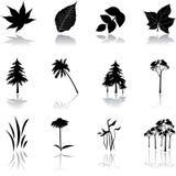 комплект природы 9 икон Стоковая Фотография RF