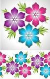 Комплект причудливых цветка и граници вектора Стоковое Изображение RF