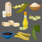 Комплект продуктов питания сои, молоко, масло, соус, тофу, фасоль, мука, мясо, здоровое питание, органический вегетарианский вект иллюстрация вектора