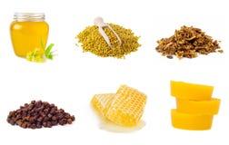 Комплект продуктов пчеловодства на белой предпосылке Мед, цветень, прополис, хлеб пива, beeswax еда здоровая Стоковое Изображение RF