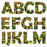 комплект прописной буквы частично Стоковые Изображения