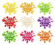 Комплект различного фрукта и овоща брызгает Стоковая Фотография