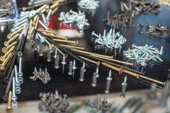 Комплект различных винтов, ногтей, само-выстукивая винтов и других частей металла для конструкции Стоковая Фотография RF