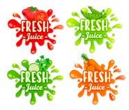 Комплект различных овощей брызгает Стоковая Фотография RF