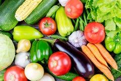 Комплект различных свежих сырцовых красочных овощей, сбор осени Стоковое Фото