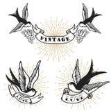 Комплект ретро татуировки стиля с птицей ласточки Конструируйте элементы для логотипа, ярлыка, эмблемы, знака, значка также векто Стоковое Изображение RF