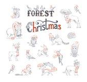 Комплект рождества леса Стоковые Изображения