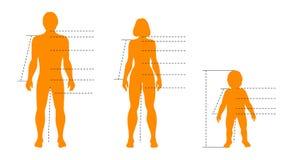 Комплект семьи человеческих тел с указателями и индикаторов для infographics медицинских, спорта и моды Шаблон изолированный вект иллюстрация вектора