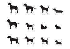 Комплект собаки разводит силуэты, иллюстрации вектора Стоковые Фото