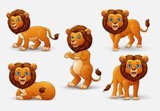 Комплект собрания льва шаржа Стоковое Изображение