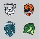 Комплект современного профессионального логотипа для команды спорта Символ вектора талисмана аллигаторов слонов бульдогов на темн иллюстрация штока