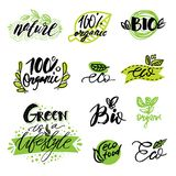 Комплект, стикеры, ярлыки, бирки с текстом натуральный продучт, органическая, здоровая еда Значки натуральных продуктов в векторе Стоковые Изображения