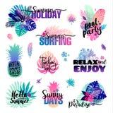 Комплект с ярлыками пальм, логотипами лета, бирками и элементами, на праздник, перемещение, каникулы пляжа также вектор иллюстрац Стоковая Фотография