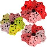 Комплект теней маков, красного цвета, зеленых и бургундского бесплатная иллюстрация