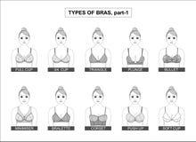 Комплект типов женских бюстгальтеров иллюстрация вектора