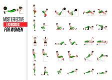 Комплект тренировок спорта Тренировки с свободным весом Тренировки в спортзале Иллюстрация активного образа жизни вектор Стоковые Изображения RF