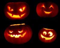 Комплект тыкв хеллоуина на черноте Стоковые Фотографии RF