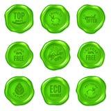 Комплект уплотнений воска зеленого цвета вектора изолированных на белизне Еда Vegan, cru иллюстрация вектора