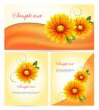 Комплект цветастых знамен с померанцовыми цветками Стоковое Изображение RF