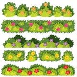 Комплект цветка Буша бесплатная иллюстрация