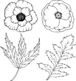 Комплект цветка в стиле шаржа Большой для карточки, плаката, печати иллюстрация вектора