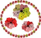 Комплект 3 цветков и рамки бесплатная иллюстрация