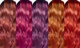 Комплект цветов собрания волос подкраски Стоковые Изображения RF