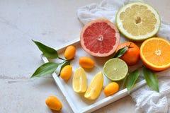 Комплект цитруса на светлой предпосылке: апельсин, мандарин, лимон, грейпфрут, известка, кумкват, tangerine Свежие органические с Стоковая Фотография RF