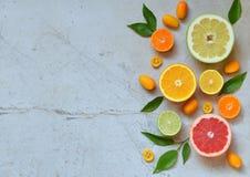 Комплект цитруса на светлой предпосылке: апельсин, мандарин, лимон, грейпфрут, известка, кумкват, tangerine Свежие органические с Стоковые Фото