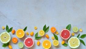 Комплект цитруса на светлой предпосылке: апельсин, мандарин, лимон, грейпфрут, известка, кумкват, tangerine Свежие органические с Стоковые Изображения RF