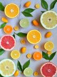 Комплект цитруса на светлой предпосылке: апельсин, мандарин, лимон, грейпфрут, известка, кумкват, tangerine Свежие органические с Стоковое Изображение