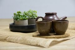 Комплект чая с декоративными горшечными растениями на циновке weave Стоковые Изображения RF