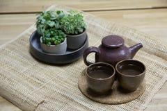 Комплект чая с декоративными горшечными растениями на циновке weave Стоковая Фотография RF