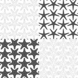 Комплект черно-белых безшовных картин с морскими звёздами вектор печатания пакетов чонсервных банк предпосылок хороший Стоковые Фото