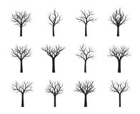 Комплект черных нагих деревьев также вектор иллюстрации притяжки corel Стоковое Изображение RF