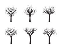 Комплект черных нагих деревьев также вектор иллюстрации притяжки corel Стоковые Фото