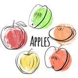 Комплект яблок различных форм Определите и половины яблок с точками покрашенными grunge Стоковая Фотография