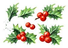 Комплект ягоды падуба символа рождества и Нового Года декоративный Иллюстрация акварели нарисованная рукой, изолированная на бело иллюстрация штока
