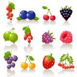 комплект ягоды Стоковое фото RF
