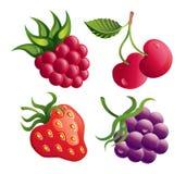комплект ягод Стоковые Изображения RF